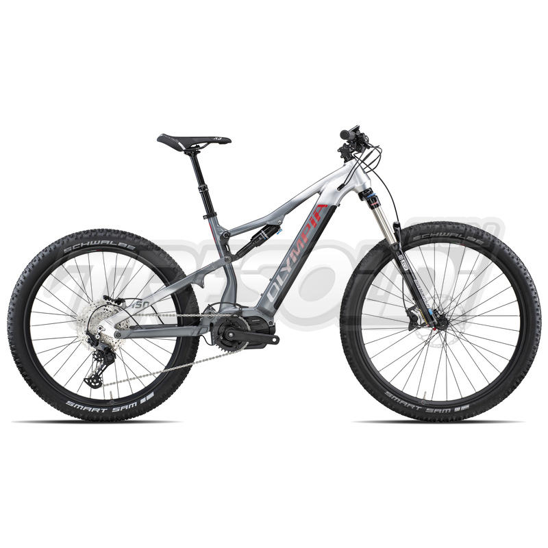 Olympia E-bike Mtb Full Ex 900 '21 Prime 29