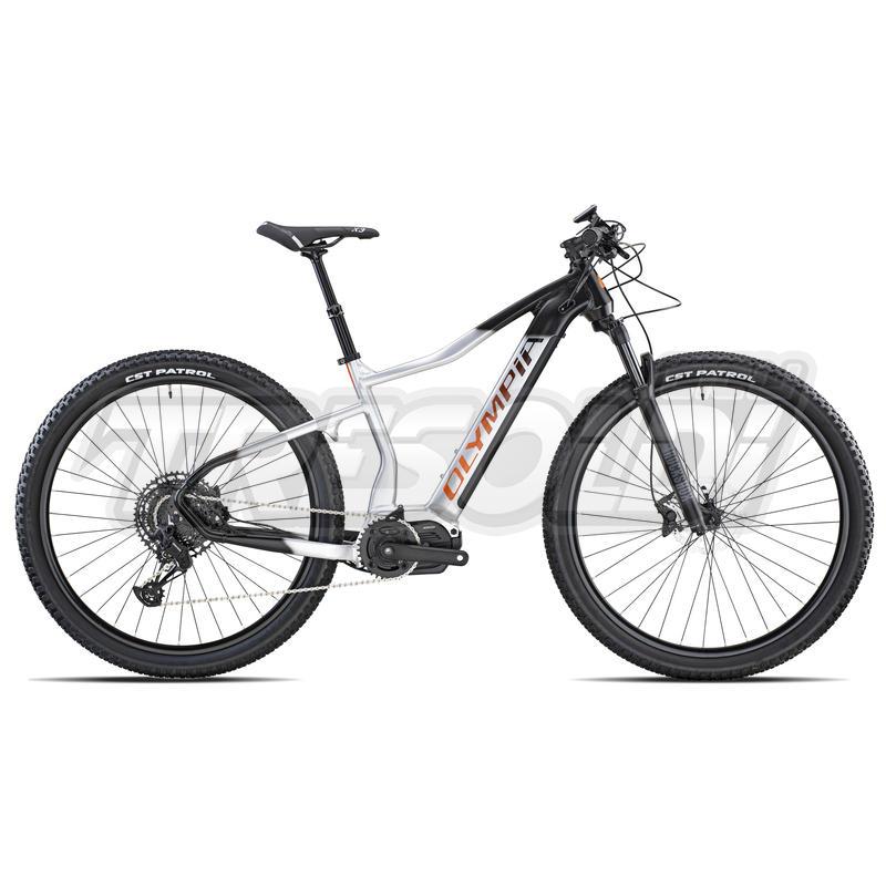 Olympia E-bike Mtb Performer 900 29