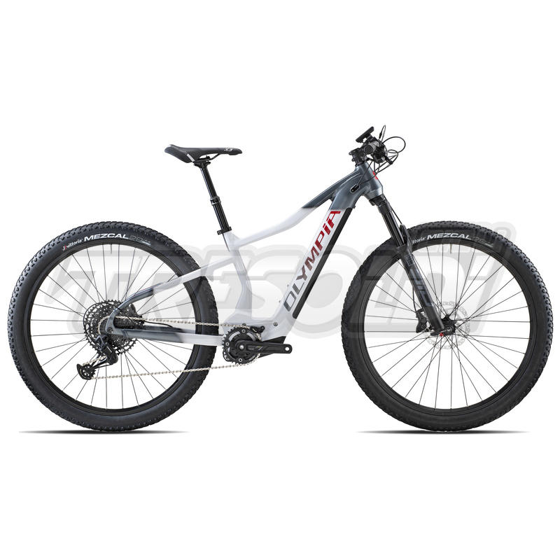 Olympia E-bike Mtb Full Ex 900 '29